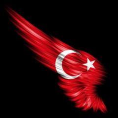 Kaliteli, Ucuz, Toptan Gönder Türk Bayrağı