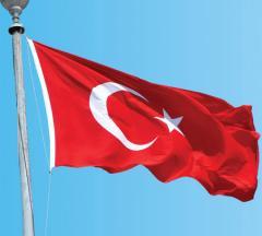 Türk Bayrağı Gönder Model